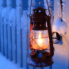 Survival Rules and the Lamp Lighter